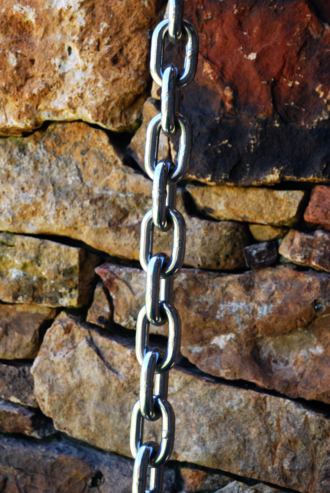 Chain ~ Dry Creek Valley, California