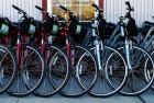 Bicycles ~ Healdsburg, California