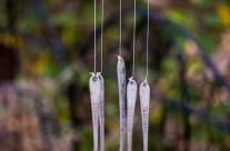 Forks in the Garden