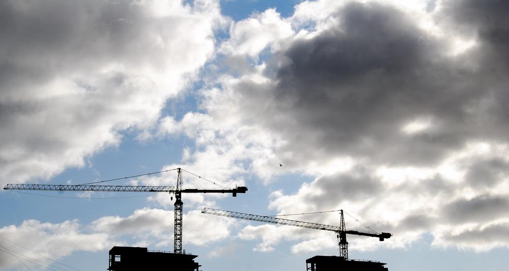 Cranes ~ San Francisco, CA