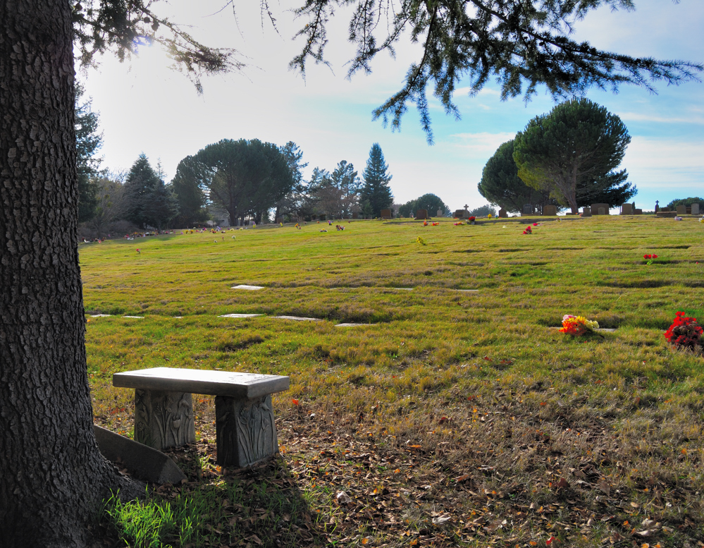 Rest in Peace ~ Sebastopol, California
